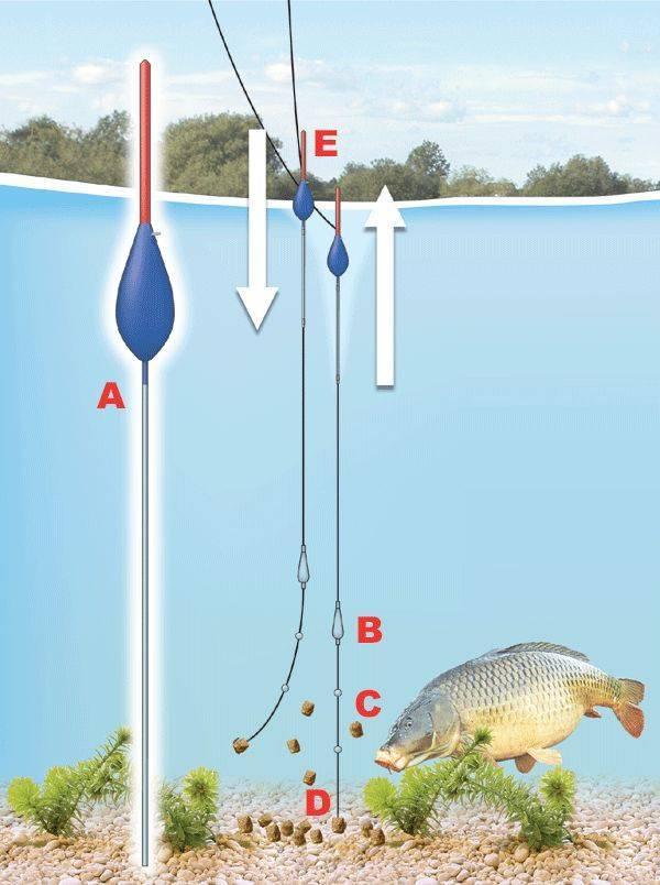 Что такое рыбалка