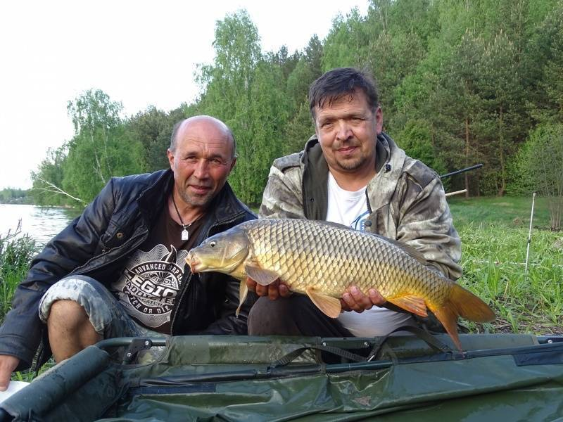 Рыбалка в брянской области: лучшие места на карте топ-10