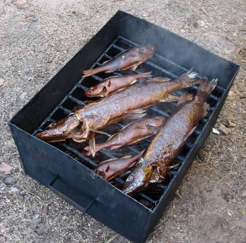 Угорь горячего и холодного копчения – рецепты приготовления