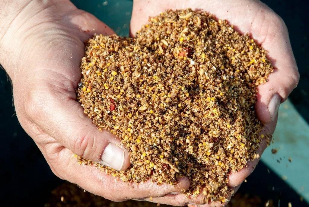 Прикормка для карпа и сазана — рецепты приготовления и ароматизация