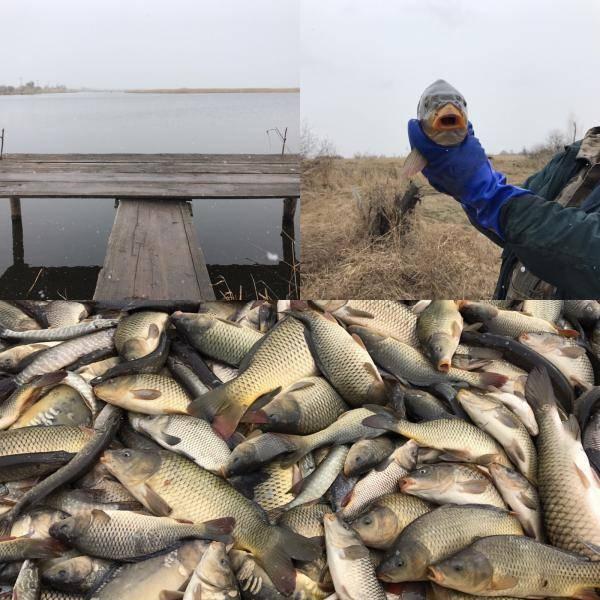 Рыбалка в городе тольятти и его окрестностях