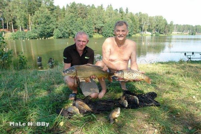 Рыбалка в подмосковье чеховский район мерлеево