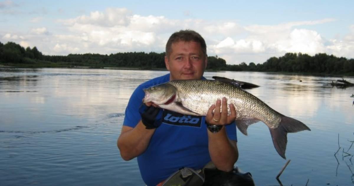 Обзор платных и бесплатных мест для рыбалки в брянске и брянской области   berlogakarelia.ru
