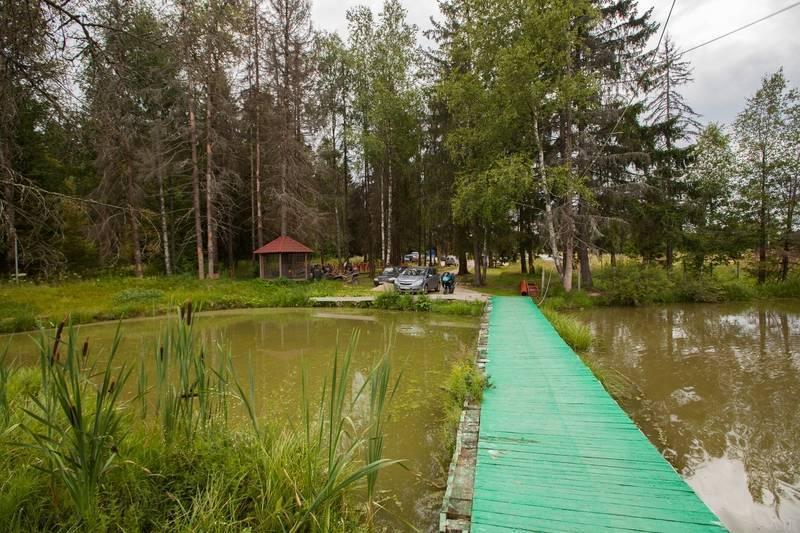 """Платная рыбалка """"хомяково"""" в  хомяково, московская область: отзывы, цены, фото"""