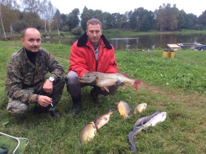 Рыбалка в луховицком районе (г.о. луховицы)