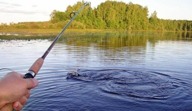 Рыбалка в таганроге. водоемы в окрестностях таганрога. ловля чехони, жереха, карася, леща. вероятность клева