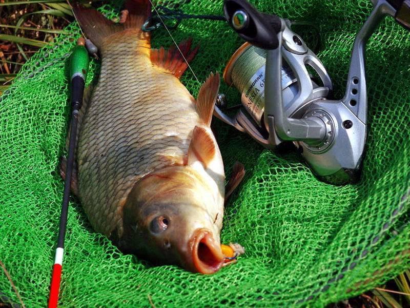 В какое время суток ловить рыбу, влияние времни суток на клев и улов