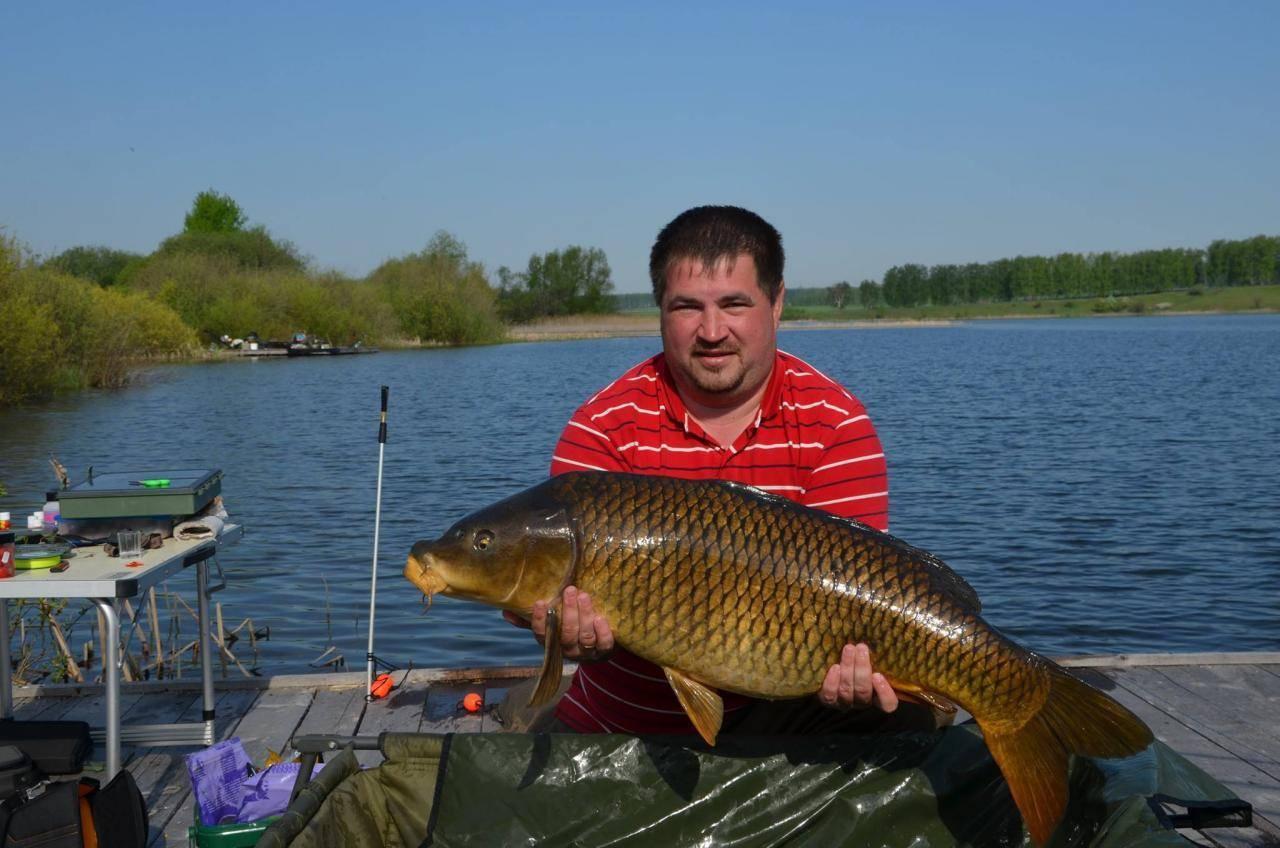 10 лучших платных прудов для рыбалки в самарской области
