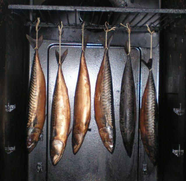 Копченый сибас: горячий и холодный методы