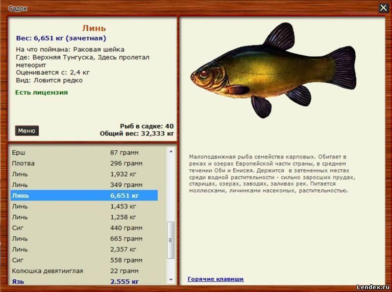 Рыбалка в Харьковской области
