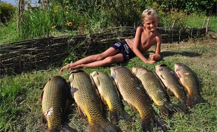 Сколько стоит заниматься рыбалкой