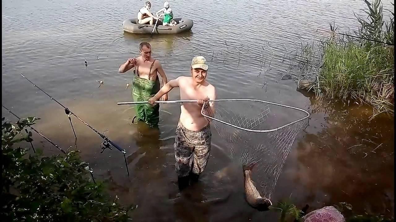 Как ловить толстолобика весной?