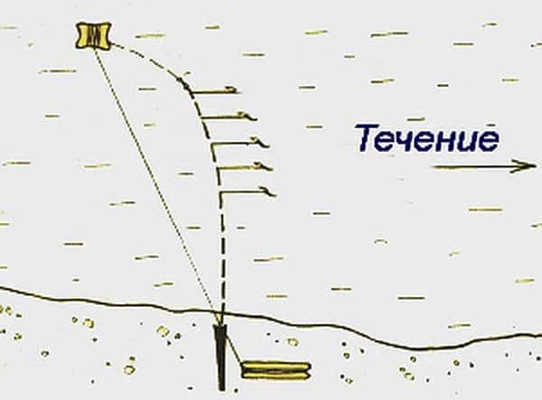Донка резинка: описание снасти, изготовление своими руками