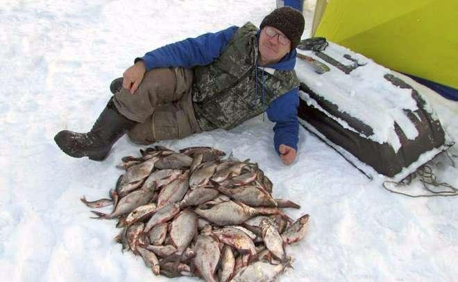 ✅ прогноз клева в заливе огур - danafish.ru