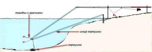 Ловля на кружок карпа, сома, карася. ловля рыбы на кружок с берега осенью, летом :: syl.ru