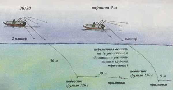 На что ловить рыбу на волге: снасти и приманки для рыбалки на волге