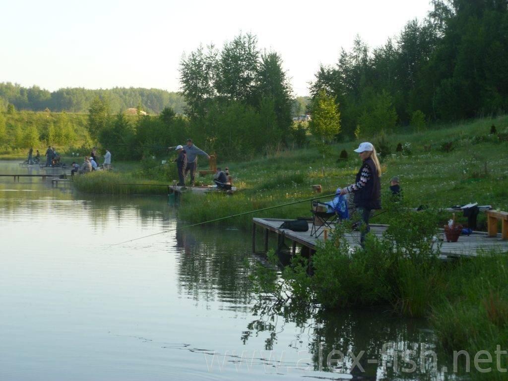 ✅ платная рыбалка в калужской области, боровский район, балабаново - рыбзон.рф