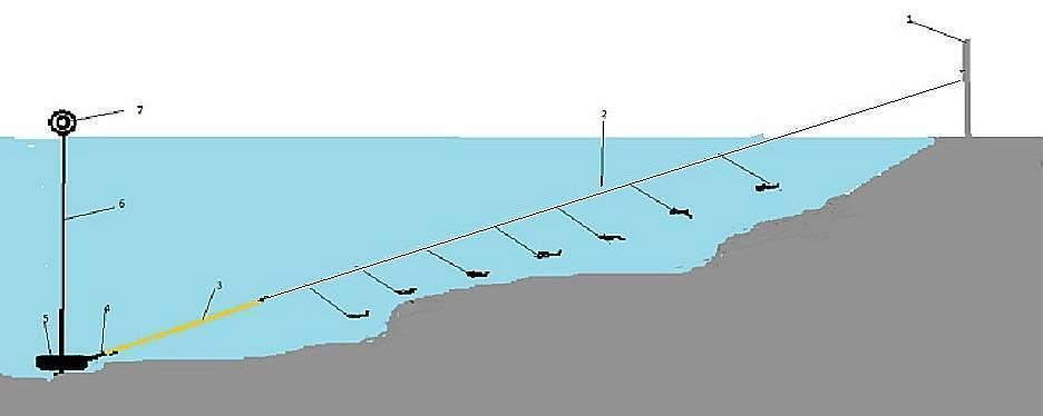 Ловля на резинку хищной рыбы: особенности снасти, техника ловли