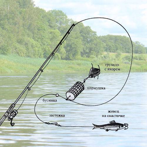 Как сделать донку для рыбалки