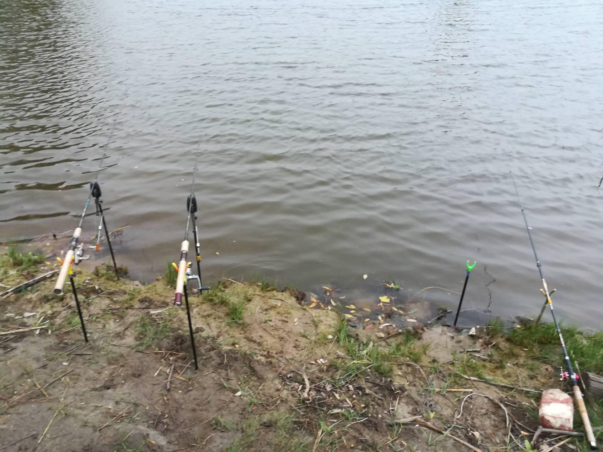 Базы отдыха воронежской области (для отдыха с рыбалкой) - цены