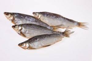 Где обитает рыба сырок ⋆ онлайн-журнал для женщин