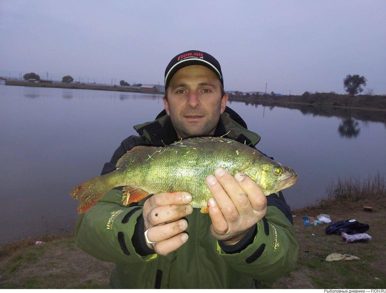 Места для рыбалки в ставропольском крае – платная и бесплатная рыбалка!