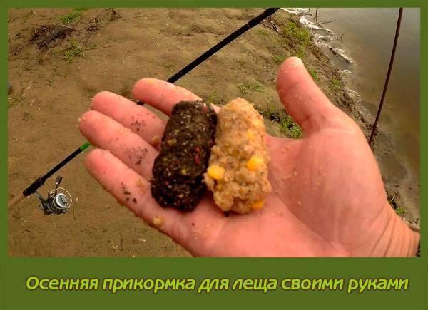Ловля леща на фидер: подготовка фидерной оснастки, выбор лески и крючков, ценные советы