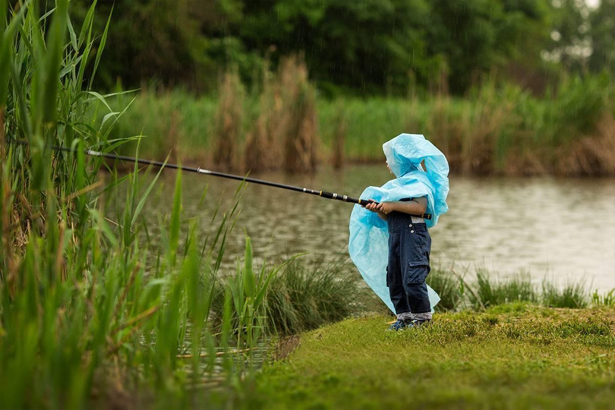 Читать книгу зимняя рыбалка. особенности ловли. снасти. техника константина сторожева : онлайн чтение - страница 14