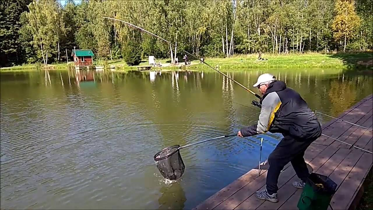 Рыбалка в «клёвом месте» на лосином острове, цены на услуги в рыболовном хозяйстве