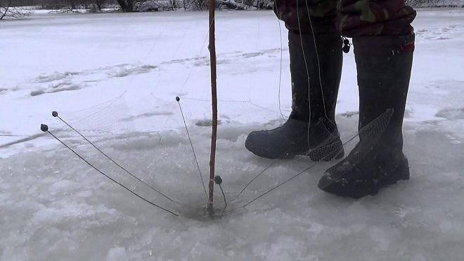 Как сохранить живцов до рыбалки живыми