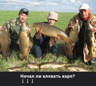 Рыбалка на карпа весной