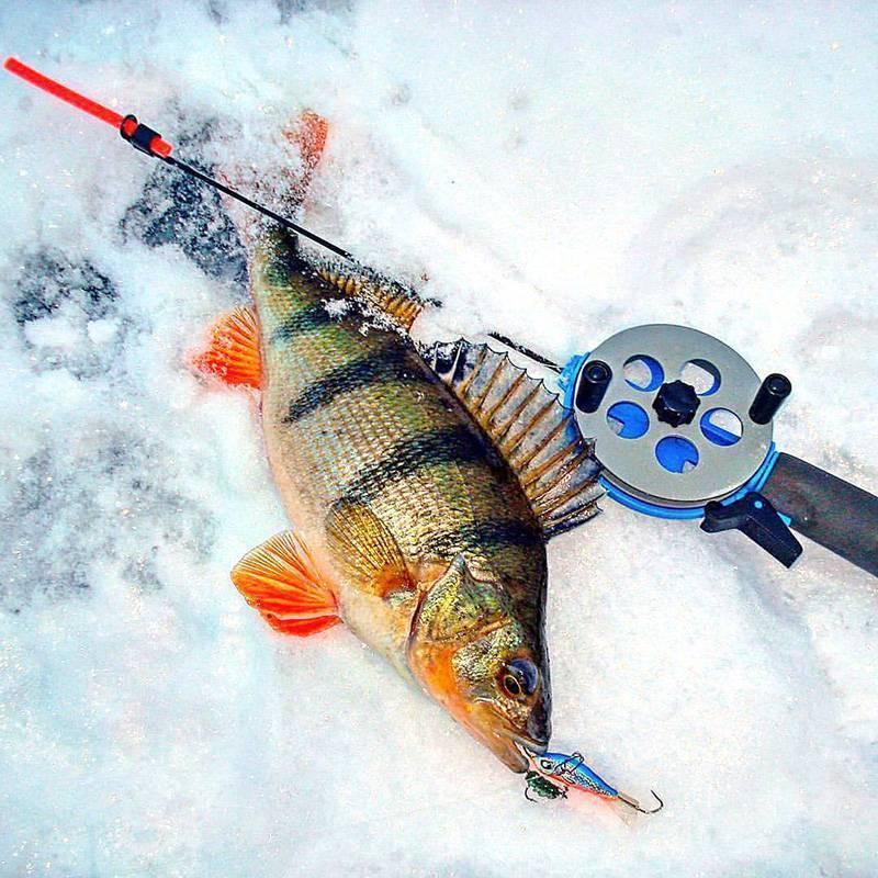 Ловля щуки на балансир зимой