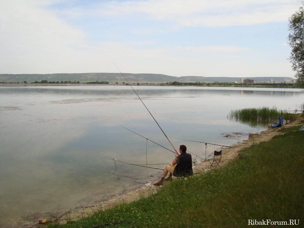 Пресноводная рыбалка в крыму 2020 - форель, щука, карп, карась, сазан, окунь... - перекоп.ру