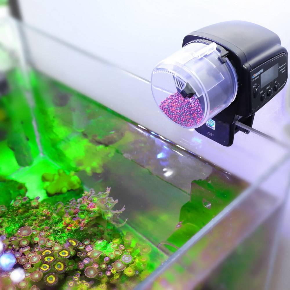 Как выбрать автоматическую кормушку для рыб? отзывы о лучших моделях и производителях