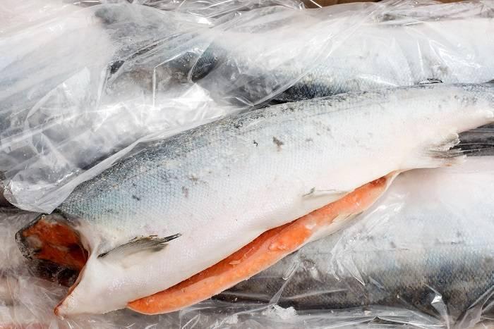 Кижуч: описание, рыбалка, вкусные рецепты