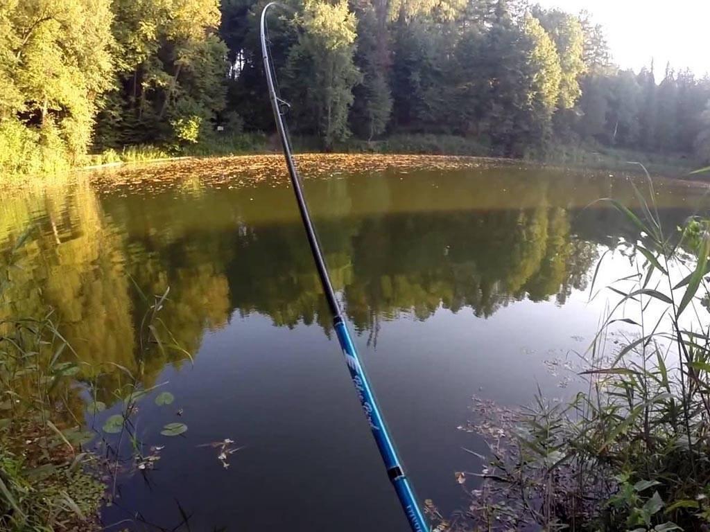 Платная и бесплатная рыбалка в подольском районе – суперулов – интернет-портал о рыбалке