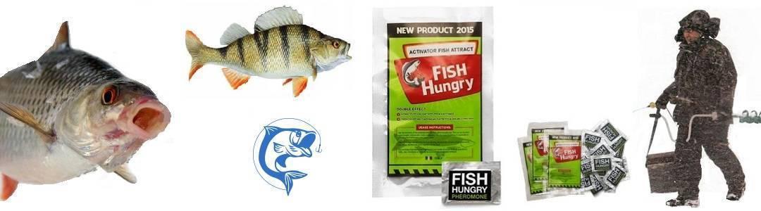 Активатор клева fishhungry – описание и отзывы