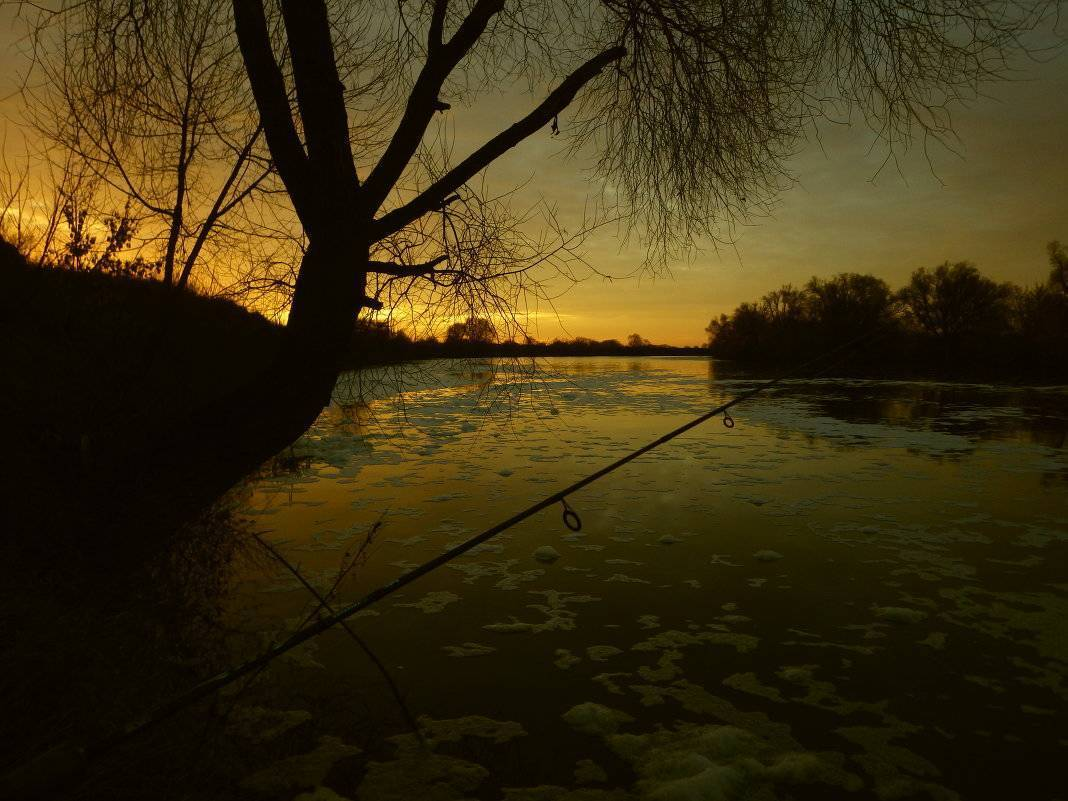 Зимняя ловля рыбы ночью (плотва, лещ, щука, судак)