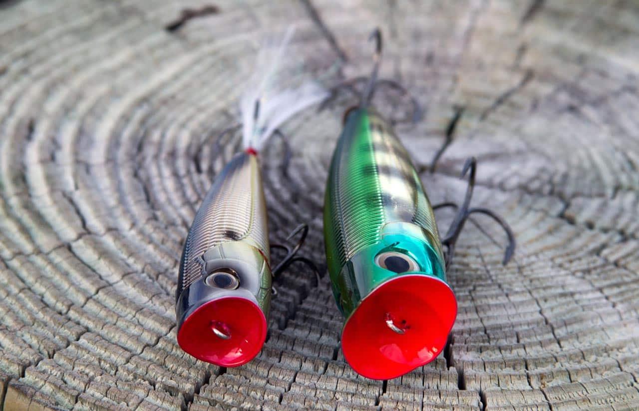 Попперы на щуку (25 фото): ловля на поппер осенью и в августе. рейтинг лучших уловистых попперов. их проводка