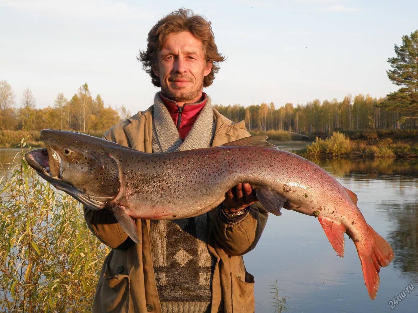 Рыбалка в красноярске и красноярском крае: на водохранилище и енисее, на озере бартат и в других местах. где рыбачить на карася и ловить форель?