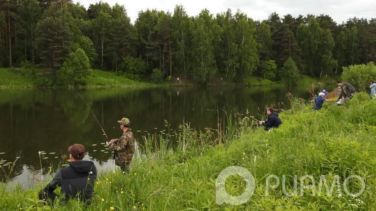 Где порыбачить в подмосковье: бесплатно, карта рыбалки