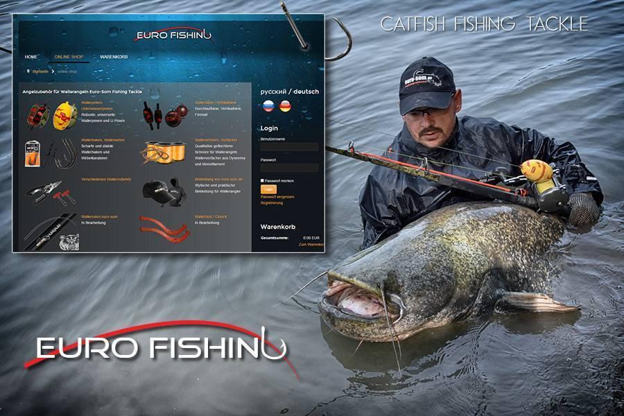 Ловля сома – рыбалка зимой, весной, летом и осенью + видео и фото