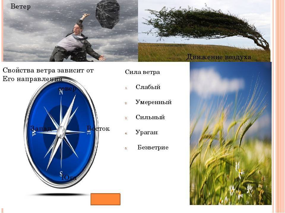 Плохой и хороший ветер для рыбалки
