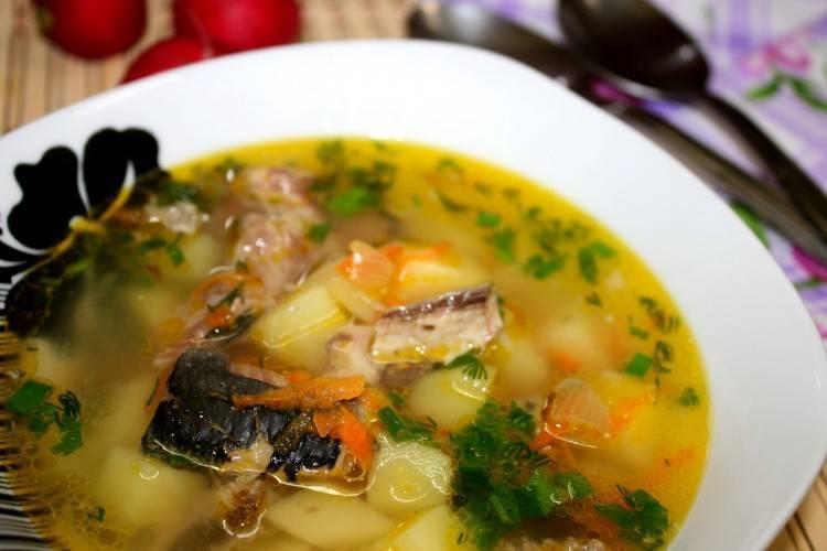 Рыбный суп из консервов - 24 домашних вкусных рецепта приготовления