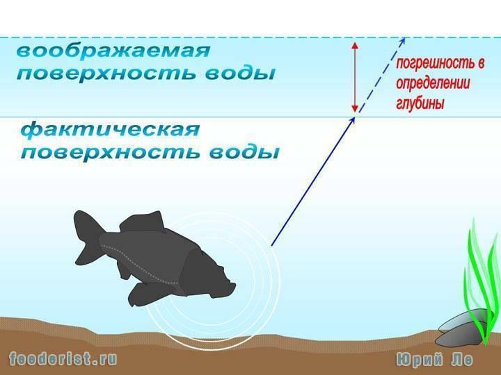 Когда клюет рыба