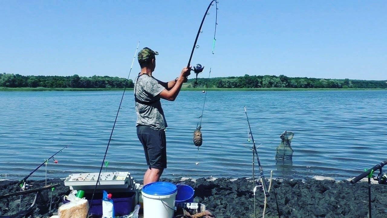 Ловля леща на резинку: топ советы трофейного улова
