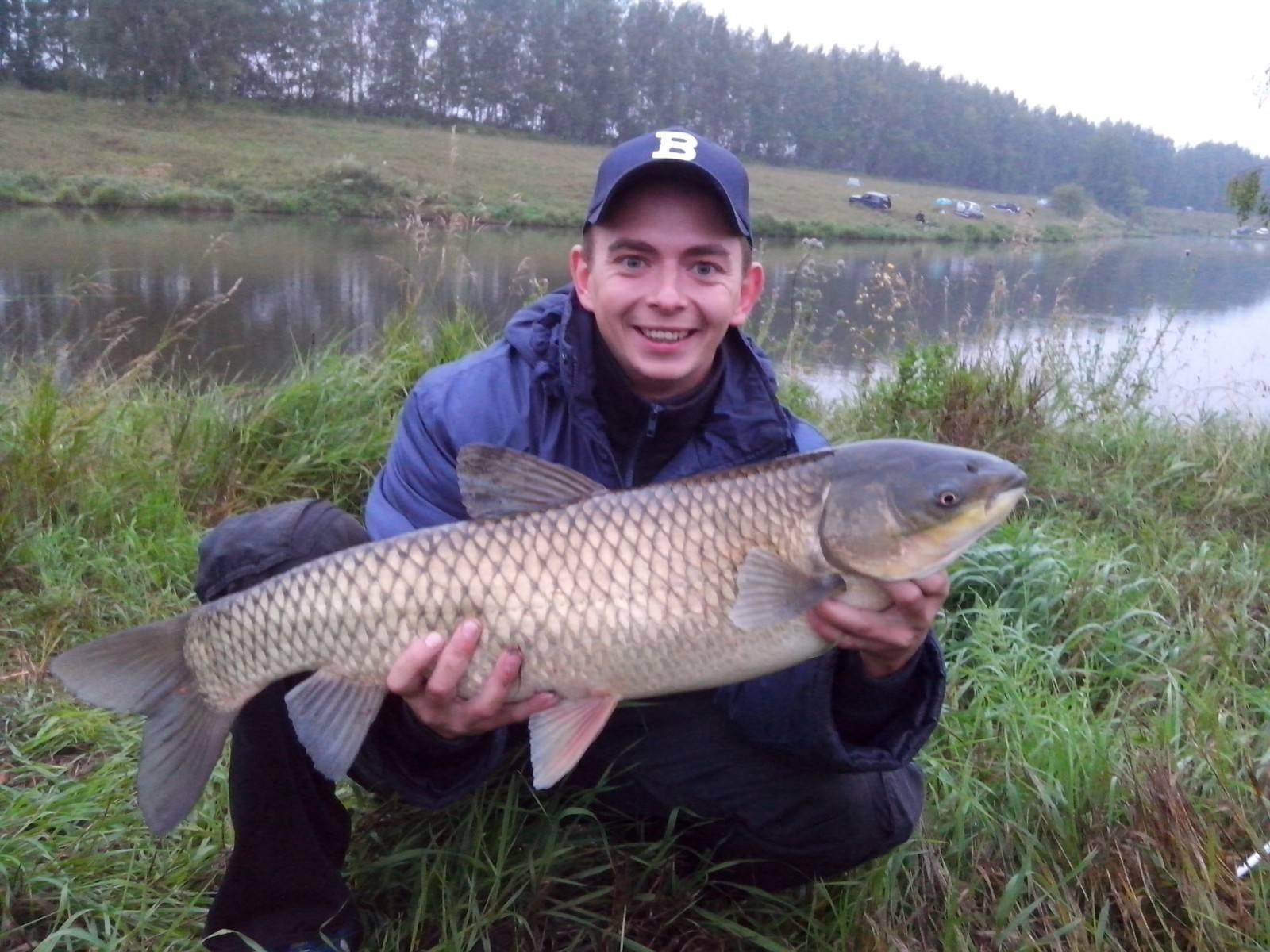 Рыбалка в тульской области: бесплатные реки и озёра, платные пруды, видовое разнообразие рыбы в регионе