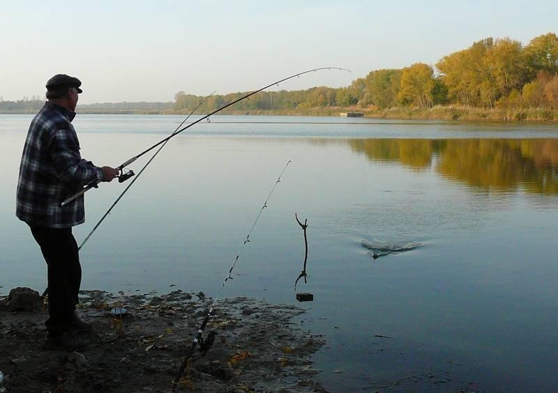 Ловля окуня в ноябре на спиннинг: где искать и на что ловить