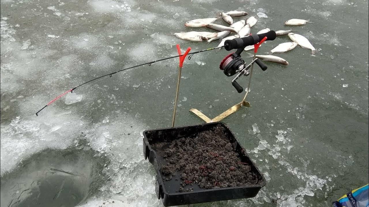 Зимний фидер со льда: оснастка и другие особенности ловли