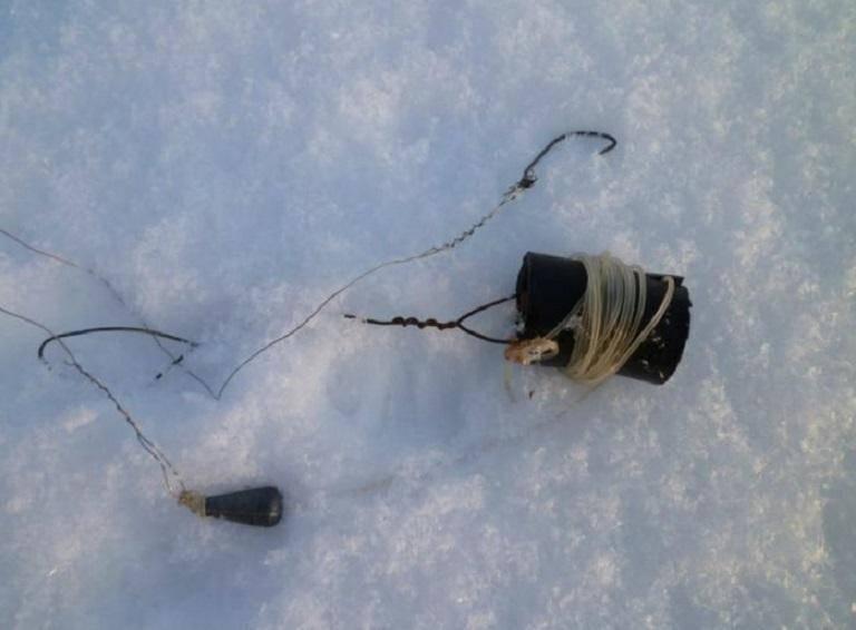 Как ловить налим?